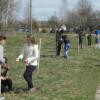 70 березок в честь Великой Победы высажены в Щепичском парке
